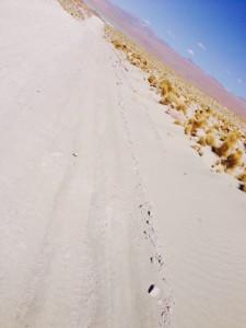 piste sable