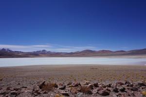 Laguna Tuyaito - Atacama
