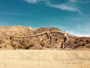 Squelette de Lessemsaurus